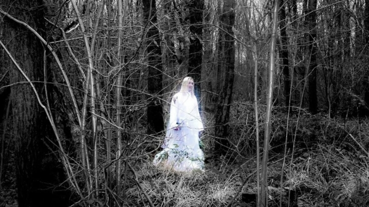 vlipp - La dame blanche