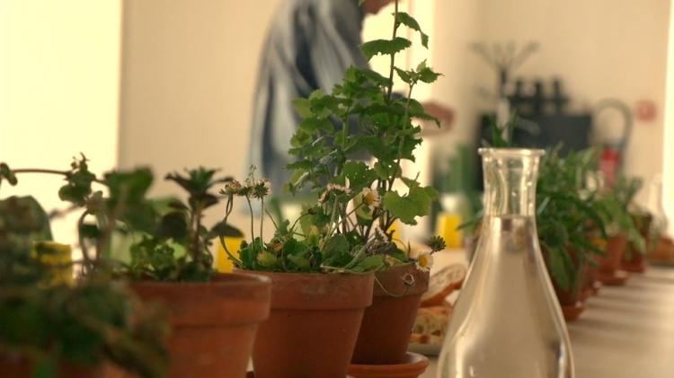 vlipp - Dégustation pédagogique avec Slow Food